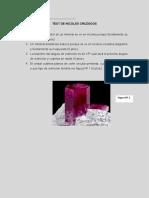 Test de nicoles cruzados.pdf