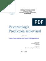 PAudiovisual Psicopatología 2