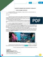 EvaluacionLenguaje6U4.doc