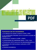 metabolism_de_nucleotidos.ppt