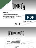 Instrumente optice - Luneta - Zaharia Nicoleta Catalina