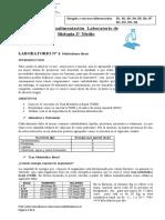 02-SEMANA 27-04 RETROALIMENTACION PRIMER LABORATORIO TERCERO DIFERENCIADO