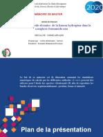 Etude Par La Méthode Ab-Initio de La Liaison Hydrogène Dans Le Complexe Formamide-eau