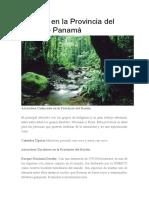 Turismo en la Provincia del Darién.docx