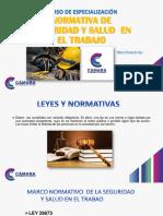 1.NORMATIVA DE SEGURIDAD Y SALUD EN EL TRABAJO (NSST)-2020.pdf