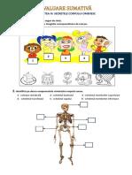 Evaluare sumativa -MEM.docx