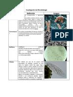 Investigación de Microbiología