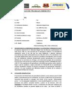 PLAN DE TRABAJO REMOTO 22-05-2020-JUNIOR ROCA LOPEZ- MARZO-ABRIL