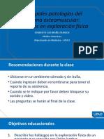 Principales patologías del sistema osteomuscular