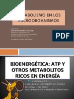 Diapositivas Metabolismo Microbiano