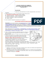 Guía virtual Santander No. 1.docx