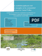 Estudio multidisciplinario del ecosistema manglar en la comunidad