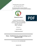 mémoire fin2015.pdf