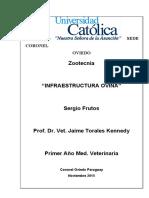 INFRAESTRUCTURA_PARA_OVEJA.docx