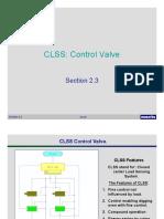 CLSS.pdf