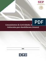 Lineamientos-de-las-Actividades-Artisticas-y-Culturales.pdf