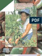 Manual Organico