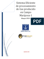 Gas Efficiency System Mariposa- 1.docx