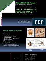 CLASE 5. ARTRÓPODOS I-ARÁCNIDOS.pptx