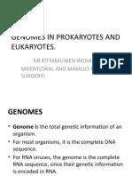 Genomes in Prokaryotes and Eukaryotes
