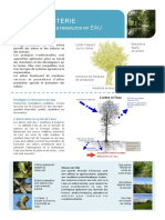 Fiche-eau-agroforesterie-AFAF