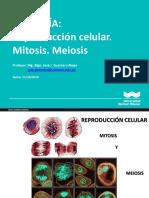 BIOLOGIA_Obstetricia_Semana_10_WIENER (1)