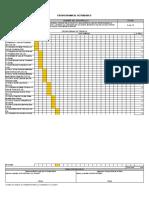 Modelo Cronograma de Construccion