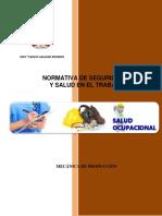 Manual Normativa de Seguridad y Salud en El Trabajo