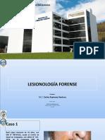 UPLA 2018-II Clase INTRODUCCION y Lesiones