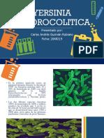 YERSINIA ENTOROCOLITICA.pdf