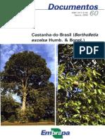 Castanha-do-Brasil-Bertholletia-excelsa-Humb.-e-Bonpl.