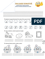 Evaluare sumativa -CLR.docx