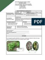 3. Guía No. 5 de Agrícola de Undécimo