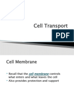 cell_transport.pptx