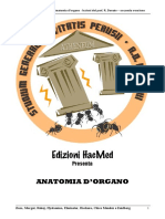 torace.pdf