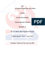 ensayo. nutricion animal Fabiola Sánchez.docx