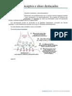 Farmacología Conceptos e ideas importantes II.docx