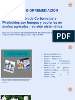 Biorremediacion carbamatos y  piretroides(articulo)
