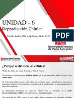 UNIDAD 6_Reproducción Celular