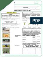 ATIVIDADES REMOTAS - BLOCO II - 3º ANO-convertido