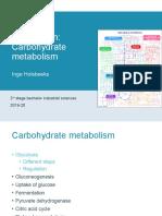 5Carbohydrate metabolism