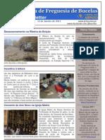 Newsletter nº 20