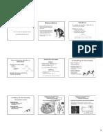 Cinesiologia e movimento.pdf