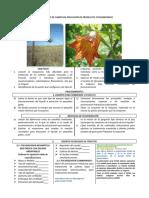 PULVERIZACIÓN GUIA WC y MT APLICACION FITOSANITARIOS