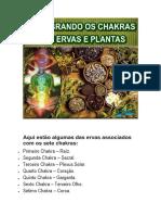 Ervas para cada Chakra-1-1.pdf