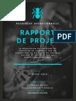 rapport de projet