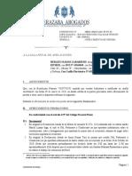 OFRECIMIENTO DE PRUEBAS │ APELACION