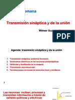 5 - Teoría - Guzmán - Transmisión sináptica y de la unión.pdf