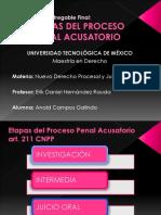 Etapas Del Sistema Penal Acusatorio Mexi