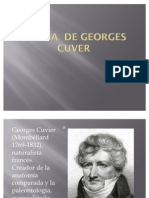 Teoría  de Georges cuver